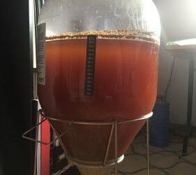 Leo's fermenting Golden Ale