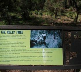 Ned Kelly Tree, Stringybark Creek