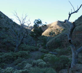 Gorge in Spear Creek