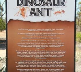 Dinosaur Ant, Poochera, South Australia