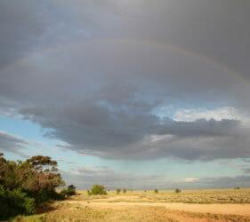 Rainbow over the saltbush looking south