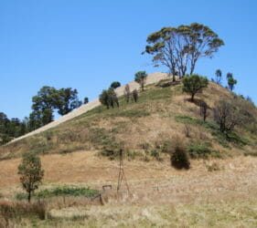 View of Jack & Clare O'Dea's old paddock at intersection of O'Dea and Retreat Valley Roads, Gumeracha